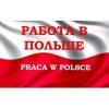 Как найти работу в Польше