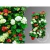 Фитомодули HydroFalls и вертикальные сады