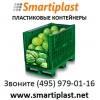 Контейнер для арбузов контейнеры под арбузы для арбузов