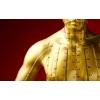 Китайский Цигун:  Меридианная Гимнастика на м. Тульская,  г. Москва