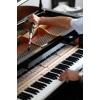 Настройка фортепиано (пианино и роялей)