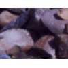 щебень гравийный цена 500 руб м 3 вязьма