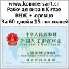 Рабочая виза в Китае через открытие юрлица