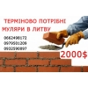 Робота в Польщі та Литві.