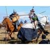 Агентство Живая История. Организация средневековых турниров, празднико