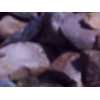 щебень гравийный по 550 руб м3