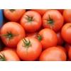 Свежие овощи и фрукты продает польская фирма