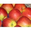 Яблоки продает польская фирма Наш Сад